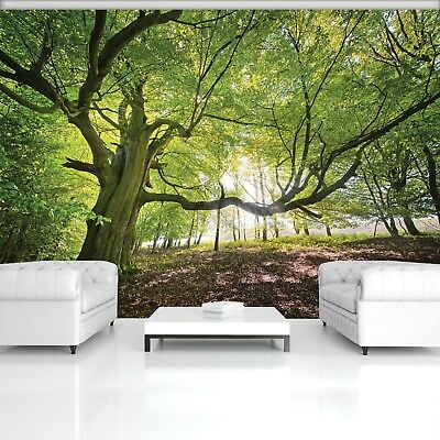 Wall Mural Photo Wallpaper Picture EASY-INSTALL Fleece Large Tree Forest Nature