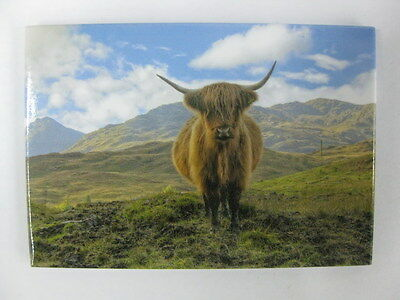 Scottish Scotland Highland Coo Cow Mountain Scene Fridge Kitchen Home Magnet