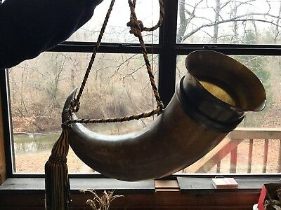 Drink Horn - HUGE 1 Gallon+, very nice curved