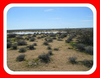 Nice 10 Ac With Great Access (Sb County) Southern California~$174 A Month