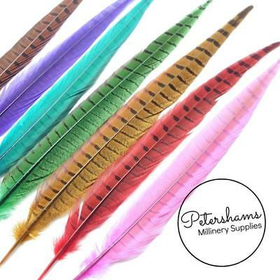 Dyed Pheasant Side Tail Feather for Millinery, Hat Making (Single Feather) 30-35