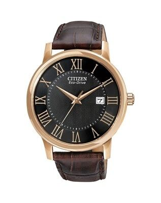 Citizen Mens Gold Stainless Steel Eco-Drive Dress Watch BM675903E