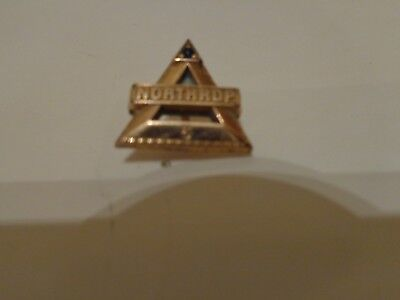 Northrup 5 year Gold Filled Service Pin with blue Sapphire