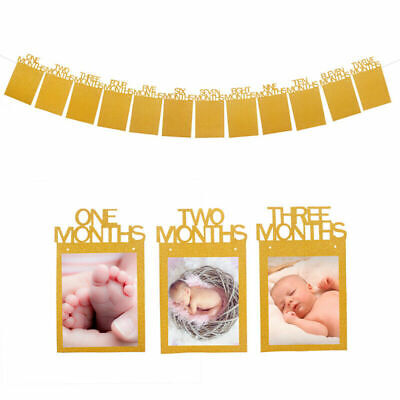 1st Birthday Boy Bunting Banner Baby 1-12 Month Growth Record Photo Props Wall