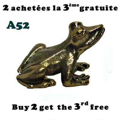 Grenouille laiton / Brass frog