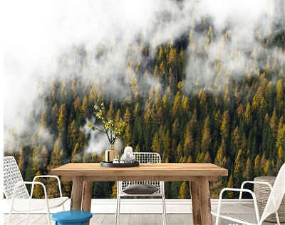 Moist Funeful Cloud 3D Full Wall Mural Photo Wallpaper Printing Home Kids Decor