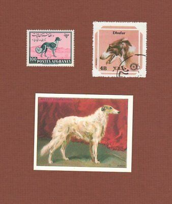 Borzoi dog postage stamps and card, set of 3