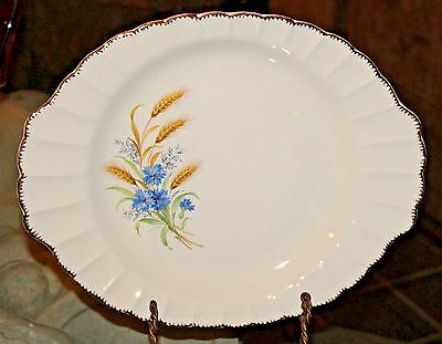 """11"""" X 14"""" Oval Serving Platter in Wheatfield-Fluted Edge by Limoges-American"""