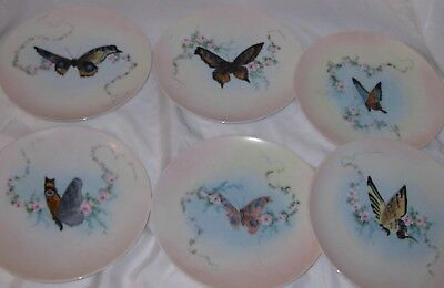 Hand Painted BAVARIA J&C JAEGER & CO Plates Butterfly Florals Set of 6 Vintage