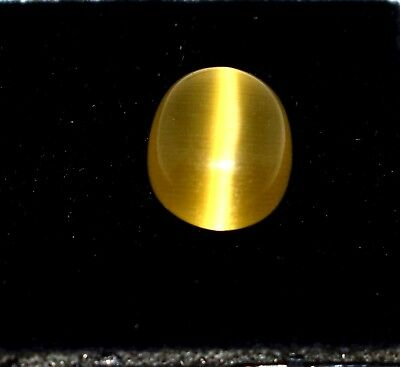3.95 Ct Natural Yellow Apatite Cat Eye Igl Certified Cabochon Online Verify
