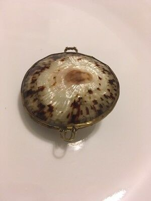Vintage Clam Shell TRINKET BOX Brass Rim Coin Holder