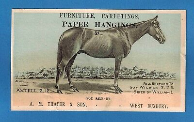 W Duxbury Ma ~ Old Ad Card ~ Furniture Paper Hangings Carpetings A M Thayer