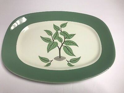 "Mid Century Taylor Smith Coffee Tree 13 1/4"" x 9 3/4"" Serving Platter 1950's"