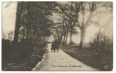 Vintage Postcard. The Avenue, Cockenzie. Used. Ref:81281