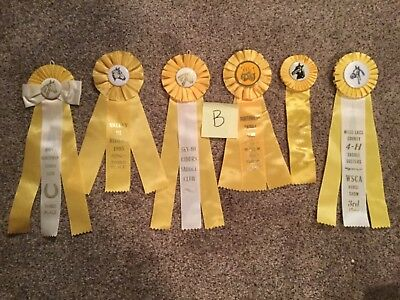 Lot of 6 Vintage Horse Show Ribbons ALL Yellow - Birthday Party pack - LOT B