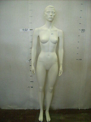 Mannequin Mannequin Doll Doll Female 3155 R5 Woman