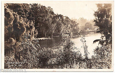 AK US USA Post Card Park Scene Los Angeles gel. 1920