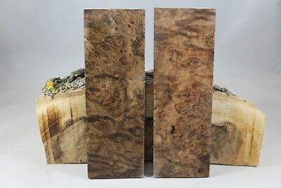 Stabilized Maple Burl Knife Handle Material Blank Scales Gun Grip (109)