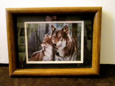 Wolf and Pup Framed Picture