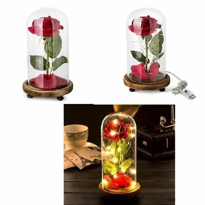 VALENTINE'S DAY GIFT Beauty And The Beast Enchanted Rose Glass Dome LED For Her