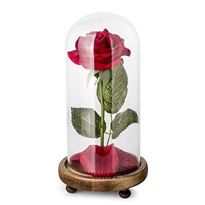 Beauty And The Beast Enchanted Rose Glass Dome Led Wedding Gift W