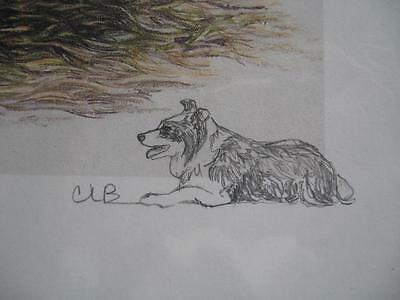 "Border Collie ""Awaiting Spring"" by Chris Lewis Brown #70/550 Sgnd/Nbrd Artwork"