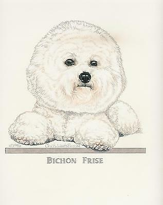 Bichon Frise Original Art by Chris Lewis Brown - #514
