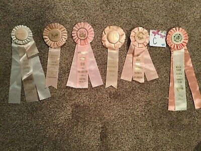 Lot of 6 Vintage Horse Show Ribbons ALL PINK-Girls Birthday Party pack - LOT C