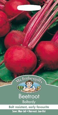 Mr. Fothergill s 11723 Beetroot Boltardy Seeds
