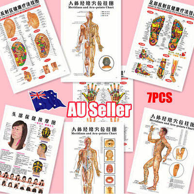 7pcs English Acupuncture Meridian Acupressure Points Posters Chart Wall Map MN