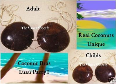 ADULT SIZE COCONUT BRA Real Coconuts NEW Tropical Luau Hula Girl Bra