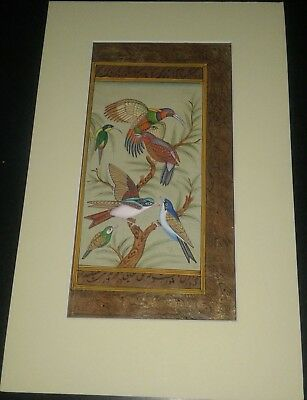 India Old Look Handmade Framed Beautiful Birds Painting On Arabic Manuscript.