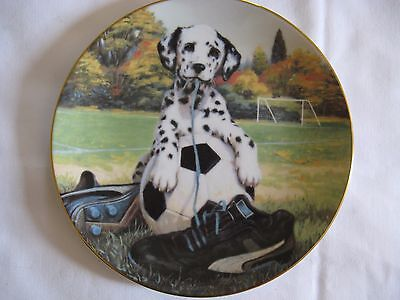 """Dalmatian Collector's Plate """"Spotted on the Sideline"""" by Jim Lamb #3230A"""