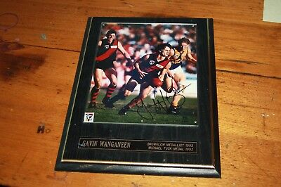 Essendon AFL Bombers 1993 Brownlow Medal Gavin Wanganeen Signed Framed Picture