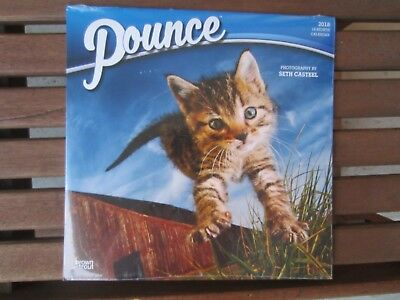 2018 Wall Calendar~18 Month~Pounce~Baby Kittens~New In Package~Brown Trout