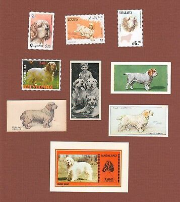 Clumber Spaniel dog postage stamps MNH and trade cards set of 9