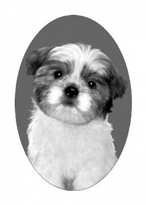 4X6 SHIH TZU dog static cling glass window decal,home, auto, removable,reusable