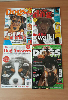 4 x Dog Magazines -  Your Dog - Dogs Monthly - Dogs Today -  101 Dog Answers