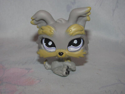 Littlest Pet Shop Lps 883 Yorkie Terrier Puppy Dog Gray With Glass