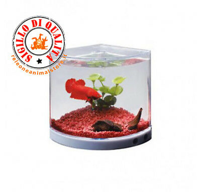 Mini Acquario Betta Tank T-101 Dophin Bettiera con luce led