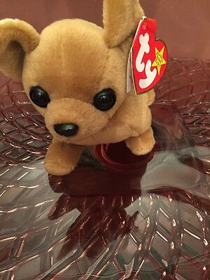 TY Beanie Babies Tiny the Chihuahua MINT with 2 Errors w/ tags & plastic tag box