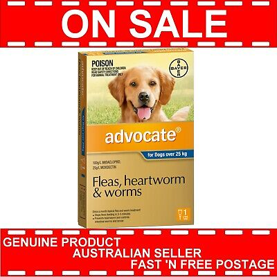Advocate for Extra Large Dogs Blue Over 25kg 1 Pack