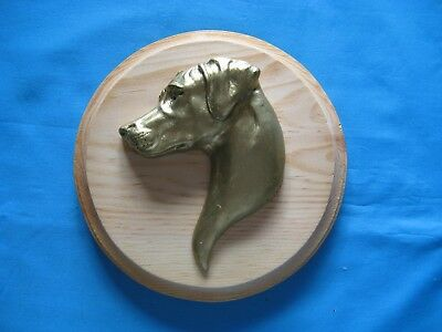 Rhodesian Ridgeback 3D Head Study Round Wall Plaque by Dannyquest