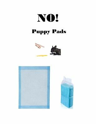 """200 Pads 23x24"""" NO! Low Cost Pads Puppy Training Housebreaking Piddle Pee Pads"""