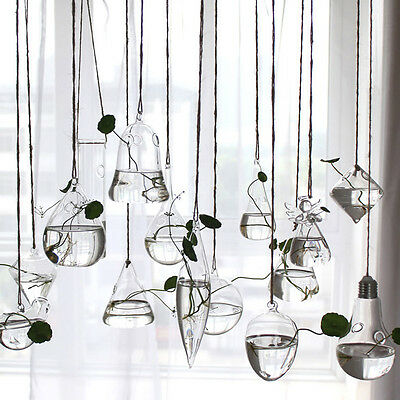 1pc Clear Flower Hanging Vase Plant Terrarium Container Glass Home/Party Decor