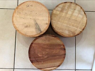 Pack of 3 Camphor Laurel and Silky Oak lathe Turning Bowl Blanks  (set 41)