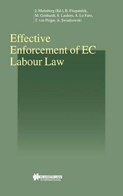 NEW Effective Enforcement Of Ec Labour Law by Barry Fitzpatrick BOOK (Hardback)