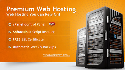WOW!!! Unbeatable Value *1 Year* Unlimited Fast SSD Website Web Hosting UK Host
