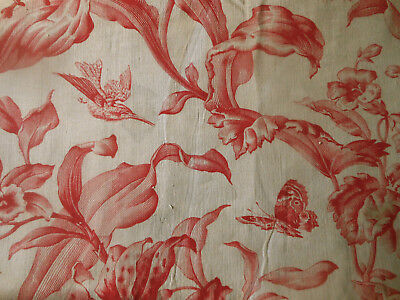 Antique French Red Botanical Humming Bird Butterfly Insect Floral Cotton Fabric