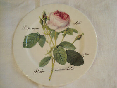 ROY KIRKHAM  'Redoubte Roses'  Large  27cm. PLATE